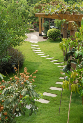 Reidy Lawn Care - Landscaping